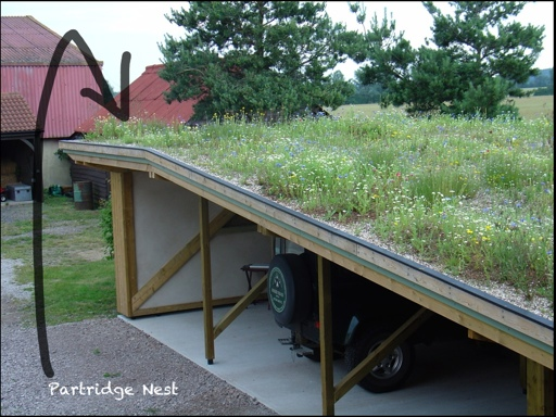 The Land Rover Carport Green Roof where the Partridge eggs were found
