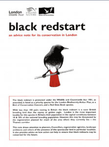 Black Redstart Guidance