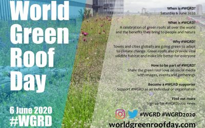 World green roof day 2020 – celebrating green roofs.